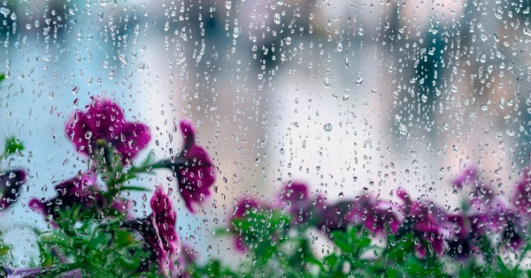 Convert your conservatory roof for rainy spring